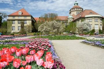 Botanical Gardens Munich