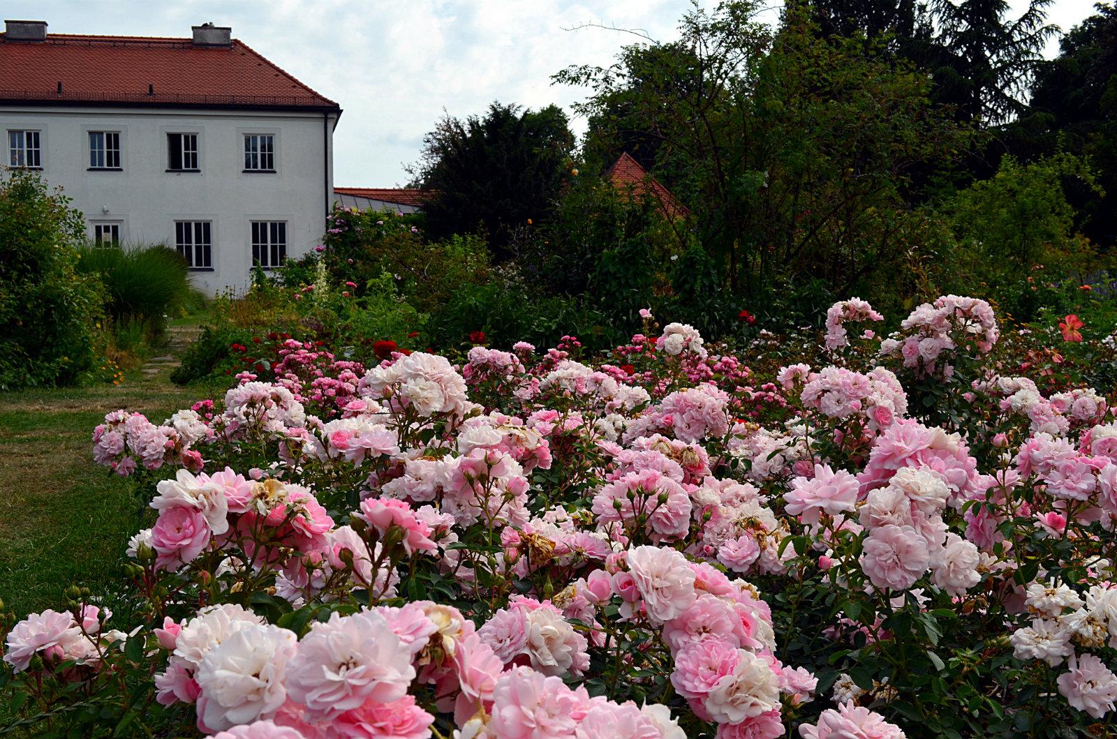 Rosengarten Munich
