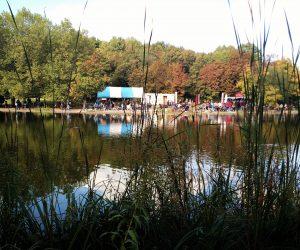 gans-am-wasser-westpark